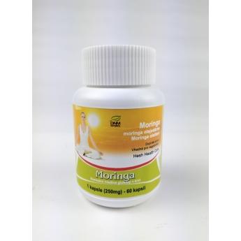 https://www.dnmcompany.cz/2079-thickbox/moringa-kapsle-60-ks-250-mg-hesh.jpg