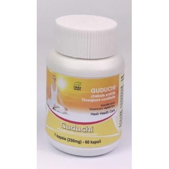 https://www.dnmcompany.cz/888-thickbox/guduchi-kapsle-60-ks-250-mg-hesh.jpg